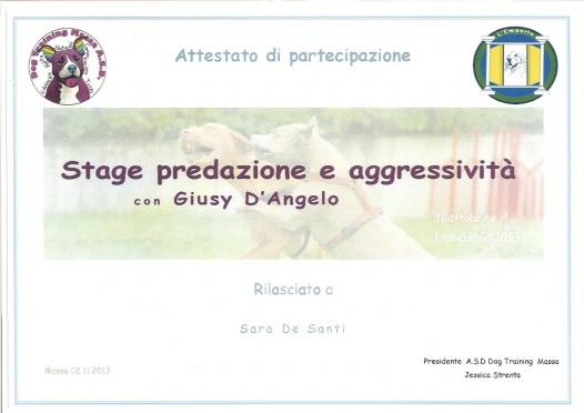 Predazione e aggressività